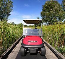 Golf Cart by snehit