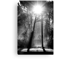 Morning at the Station take three Canvas Print