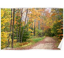Bear Road in Autumn Poster