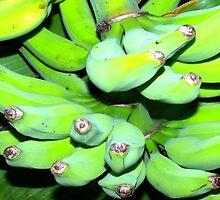 Green bananas by ♥⊱ B. Randi Bailey