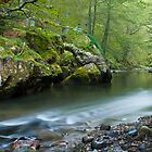 River in the Pyrenees by Brian  Moriarty