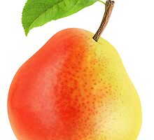 Red and yellow pear by 6hands