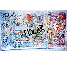 Fidlar Too  Photographic Print