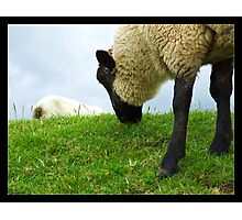 Welcome to Wales Photographic Print