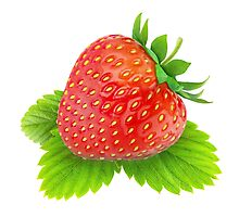 Beautiful strawberry on a leaf Photographic Print