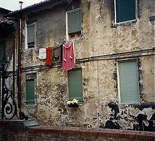 Laundry Day by BaVincio