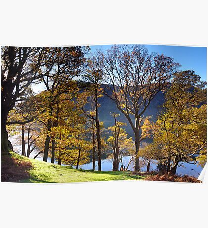 Crummock Water Autumn Trees Poster