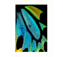 Cairns Birdwing Detail II Art Print