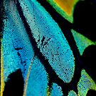 Cairns Birdwing Detail II by Damienne Bingham