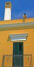 Smoke Break - Gallipoli Italy by Debbie Pinard
