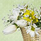 Spring Basket by Maria Dryfhout