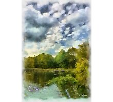 Geese On A  Pond Photographic Print