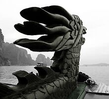 Dragon by Nic Cocker
