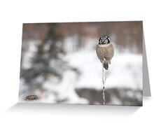 Frosty Habitat Greeting Card