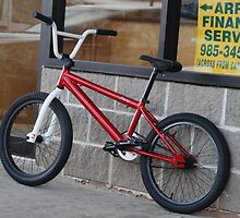 BIKE... SEEKING UPGRADE by Gary Pearce