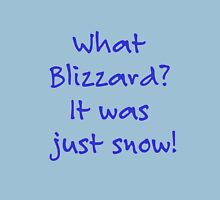 What Blizzard??? Unisex T-Shirt