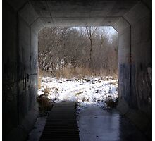 Outdoor tunnel, Ann Arbor, Mi. Photographic Print