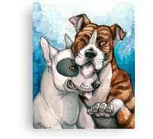 Bull Buddies Canvas Print
