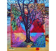 'Tree in a Field of Color' Photographic Print