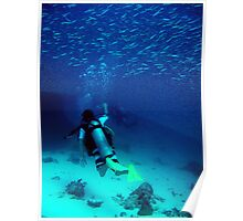 Diving Wistari Reef - Heron Island - Australia Poster