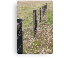 Australian Farm - Barbed Wire Canvas Print