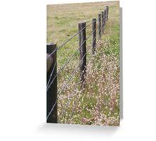 Australian Farm - Barbed Wire Greeting Card