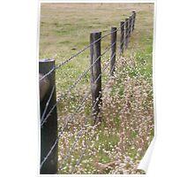 Australian Farm - Barbed Wire Poster