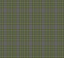 00326 Long Way Down Tartan by Detnecs2013