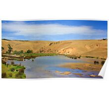 country wetlands Poster