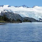 Alaskan Blues by Gary L   Suddath