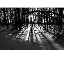 Shine On Photographic Print