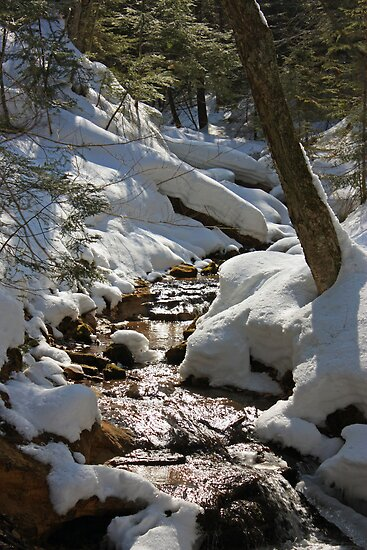 A little creek near Wagner Falls by Megan Noble