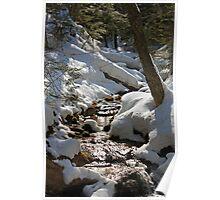 A little creek near Wagner Falls Poster