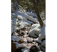 A little creek near Wagner Falls Photographic Print