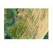 """Forest Storm""  Art Print"