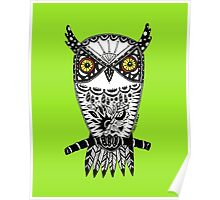 Owl on Lime Green Poster