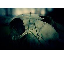 Left Behind - 1 Photographic Print