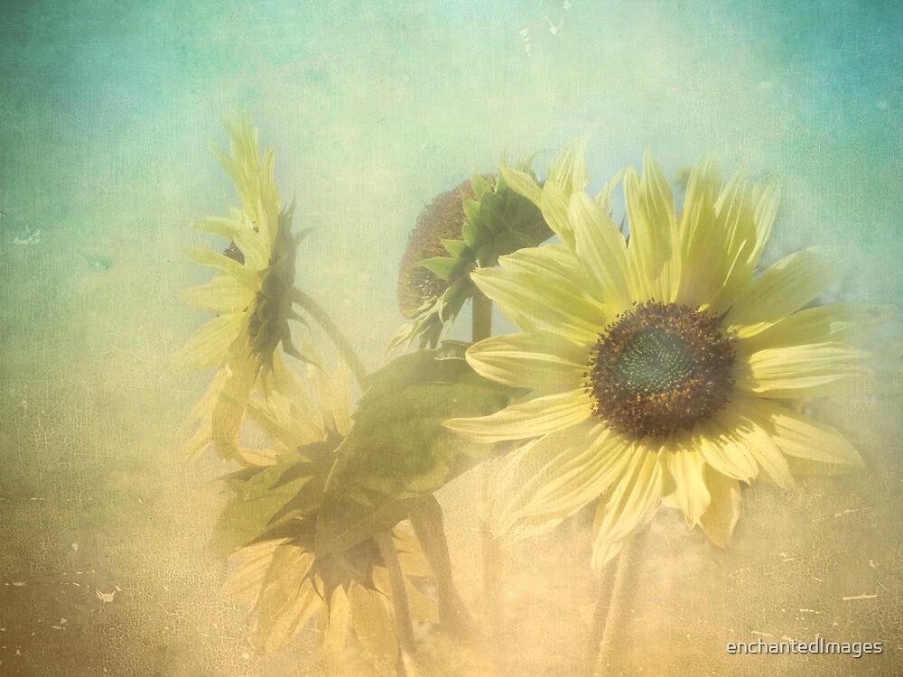 I remember.............. by enchantedImages