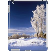 Frosted trees in January iPad Case/Skin