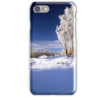 Frosted trees in January iPhone Case/Skin