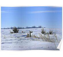 Wind Swept Prairie ! Poster