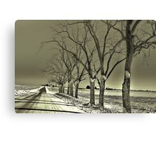 Winter's Shadows Canvas Print
