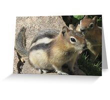 Two Speedy Little Chipmunks. Greeting Card