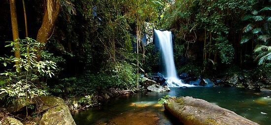 Curtis Falls, Mount Tamborine. #2 by Peter Doré