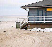 Beach house by aginia