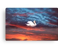 kerry red Canvas Print