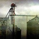 Grain Elevator by Irene Walters