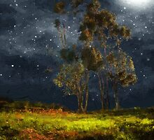 Starfield by RC deWinter