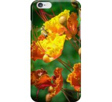 Bees in Bed iPhone Case/Skin