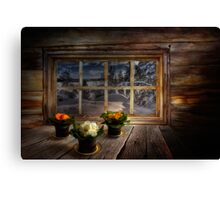 February evening Canvas Print